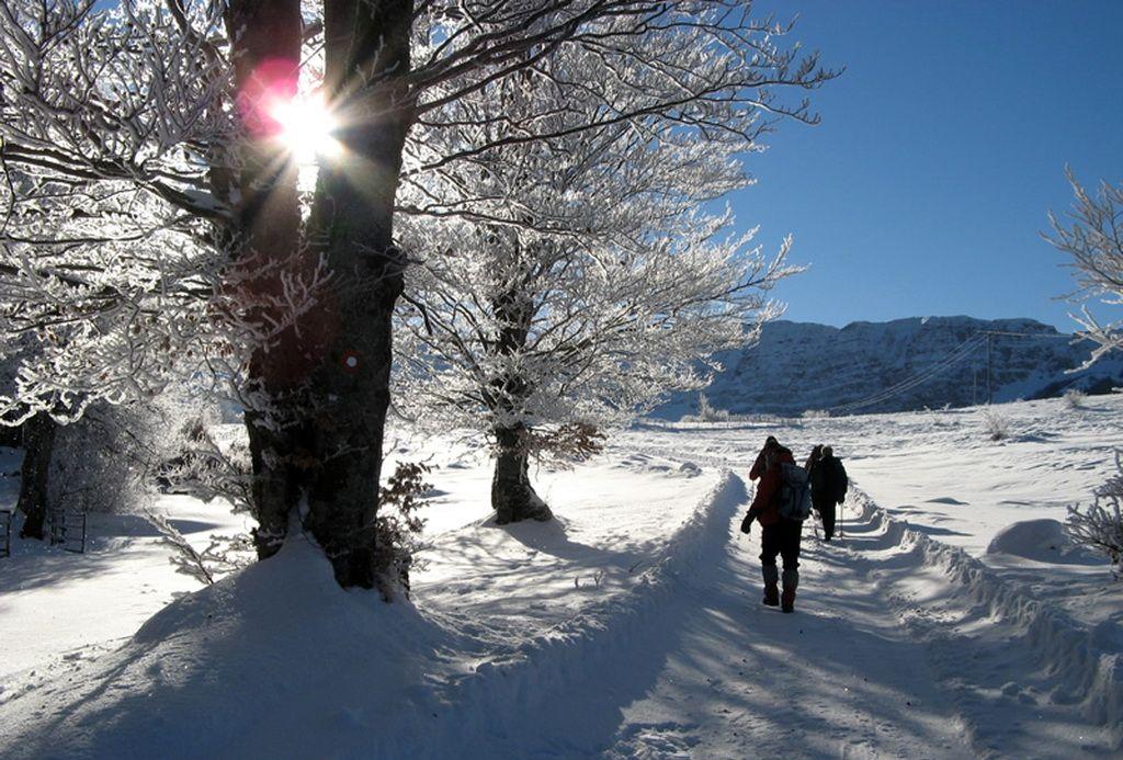 cemerno-snijeg-mojahercegovina