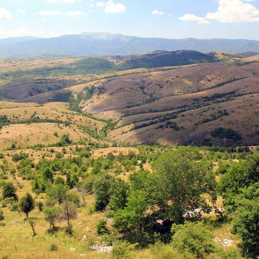 planina_zivanj_3