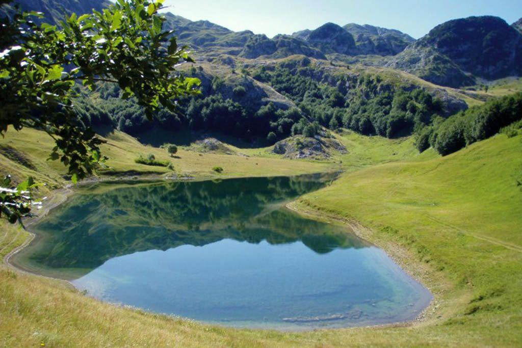 Orlovačko jezero
