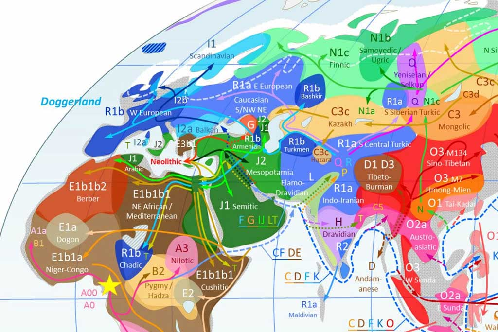 YDNA-Haplogroups